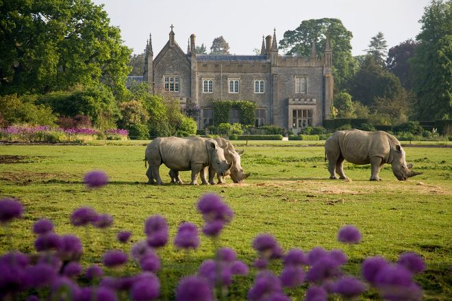 Cotswold Wildlife Park & Gardens, Burford, United Kingdom